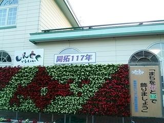 DSC_5413.JPG