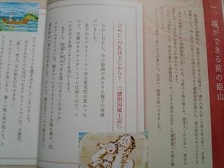 DSC_6540.JPG
