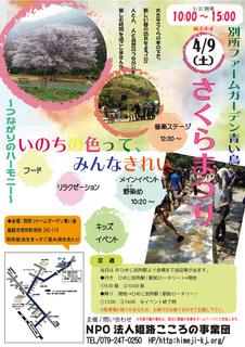 fujino20160409-1.jpg